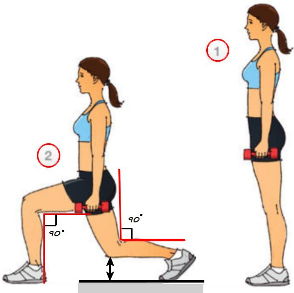 Squat and lunge continuation