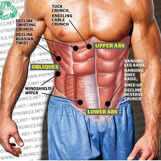 Structure ABS