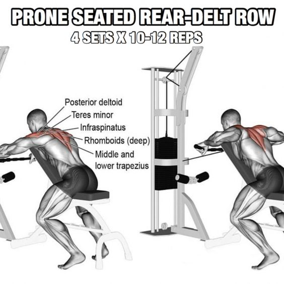 Prone Seated rear-delt ROW