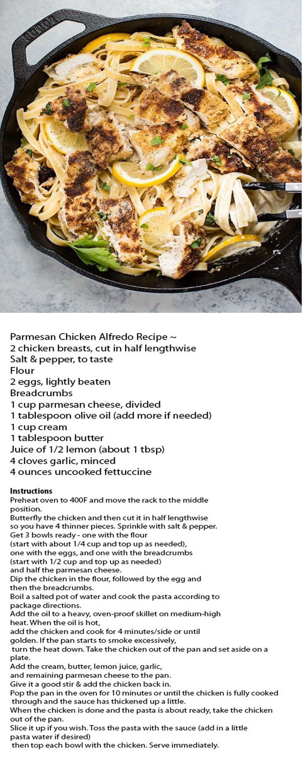 Parmesan Chicken Alfredo Recipe