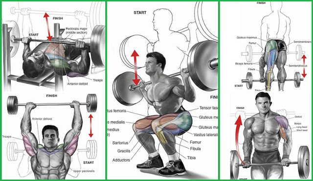 Top Mass Building Workouts You Should Be Doing Now