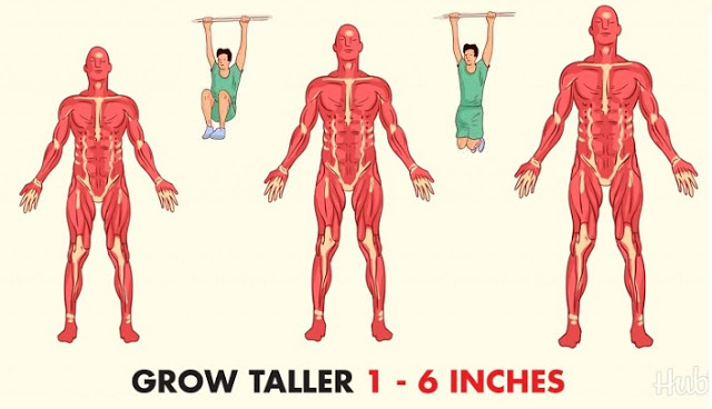 Tips on How to Grow Taller Naturally – Amazing Ways to Increase Your Height Fast