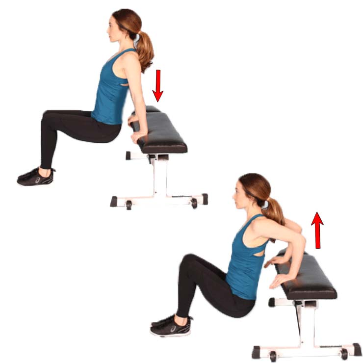 How to Bench push-ups for Women