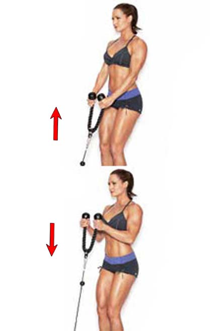 How to Do Women Crossover Biceps Curls