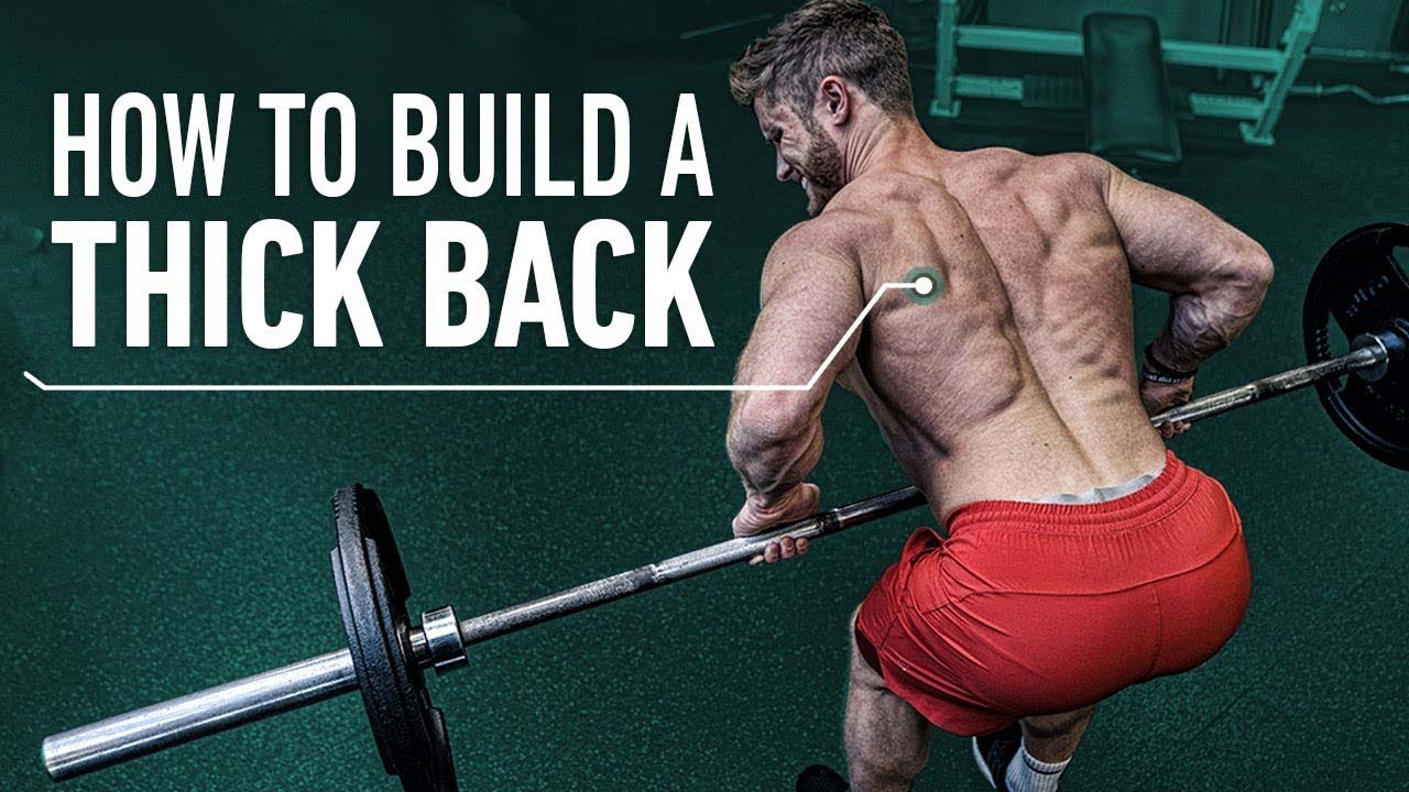 How to build a thick back