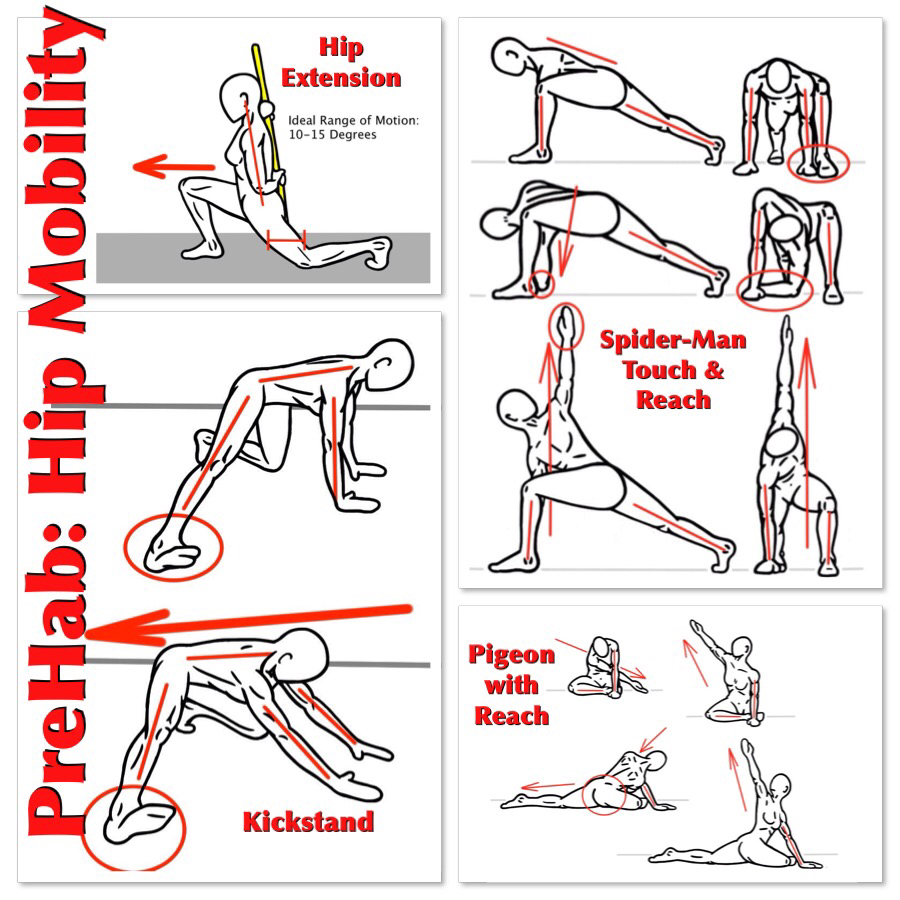 Hip Mobility is important for Human Movement