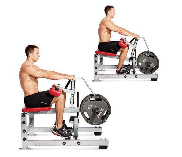 1. Calf Exercise 1: Seated Calf Raises