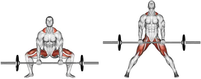 Sumo Barbell Deadlift