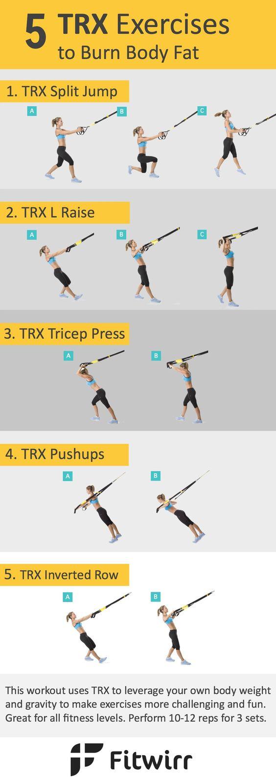 exercises trx