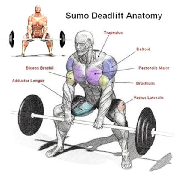 Sumo Deadlift High Pull Weighteasyloss Fitness Lifestyle