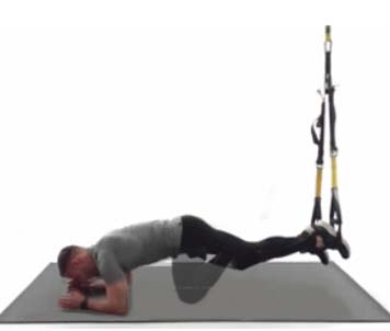 how to do trx elbow plank