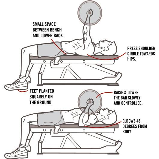 Сorrect exercises: barbell bench press
