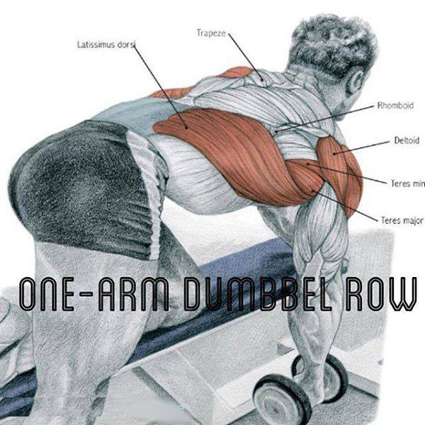 one-arm dumbbel row