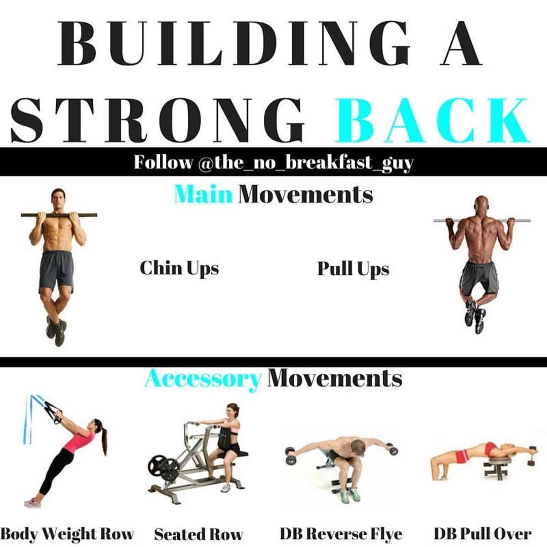 BUILDING A STRONG BACK