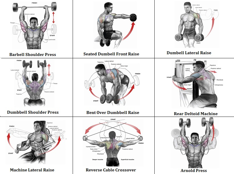 2 Shoulder Routines to Get the Best Shoulder Workout