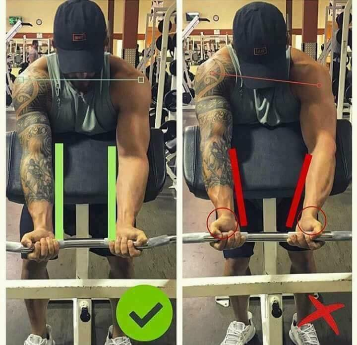 correct position of the arms when lifting the bicep