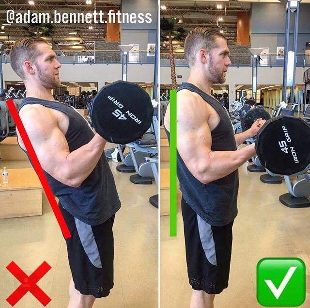 correct execution of lifting dumbbells to the biceps