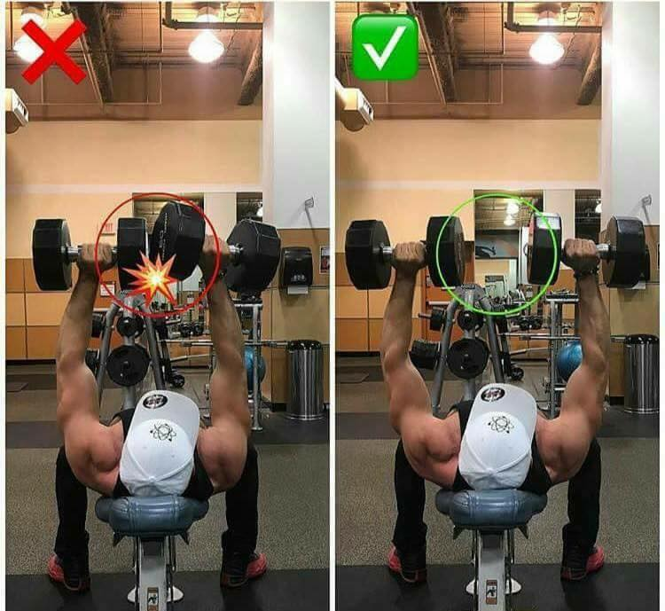 dumbbell position with bench press
