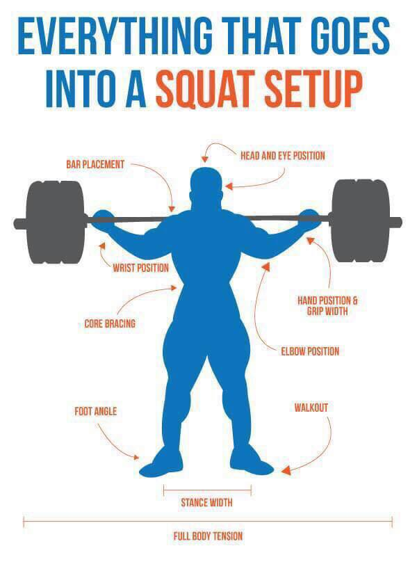 everything that goes into a squat setup