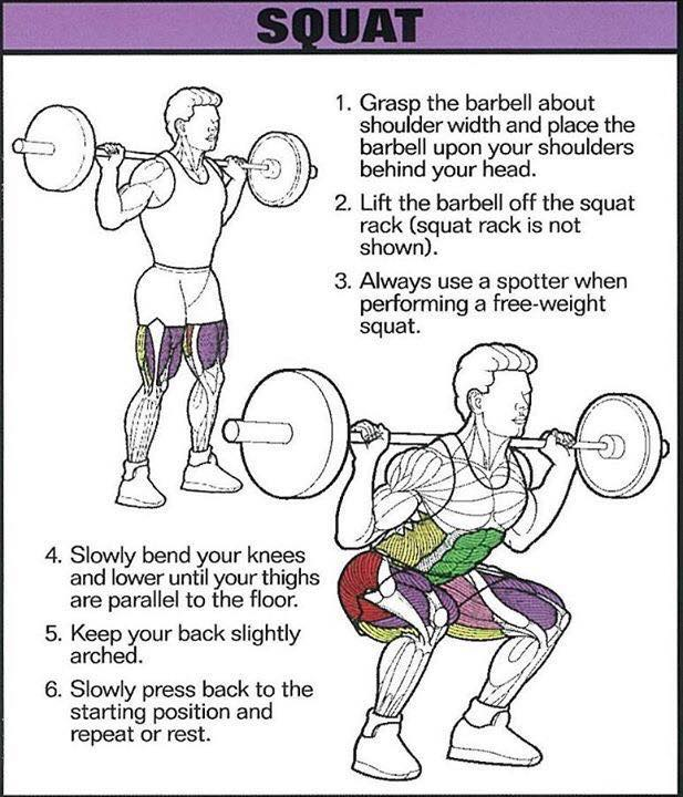 correctness of the squats with the barbell