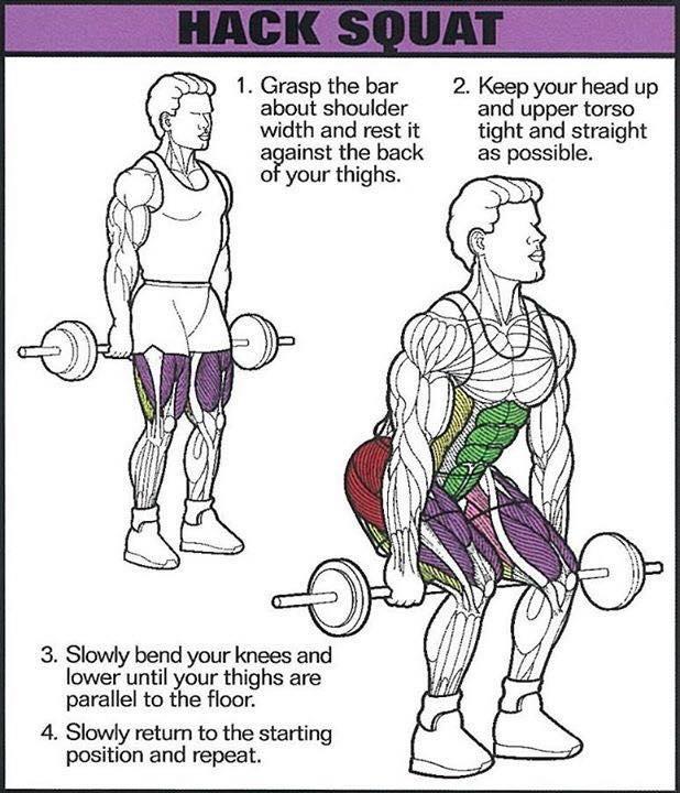 Сorrect exercises: hack squat