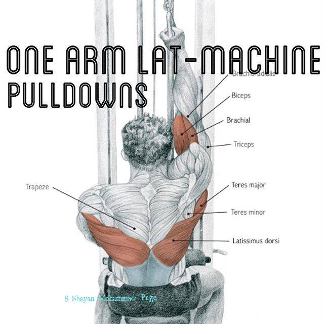 one arm lat -machine pulldowns