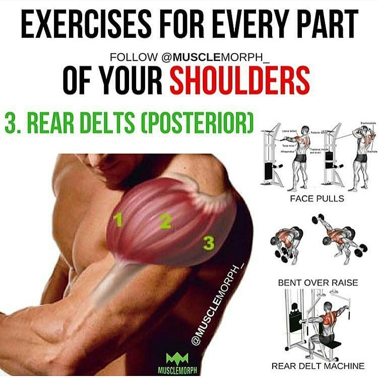 Shoulder training exercises