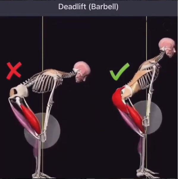 Use of deadlift.