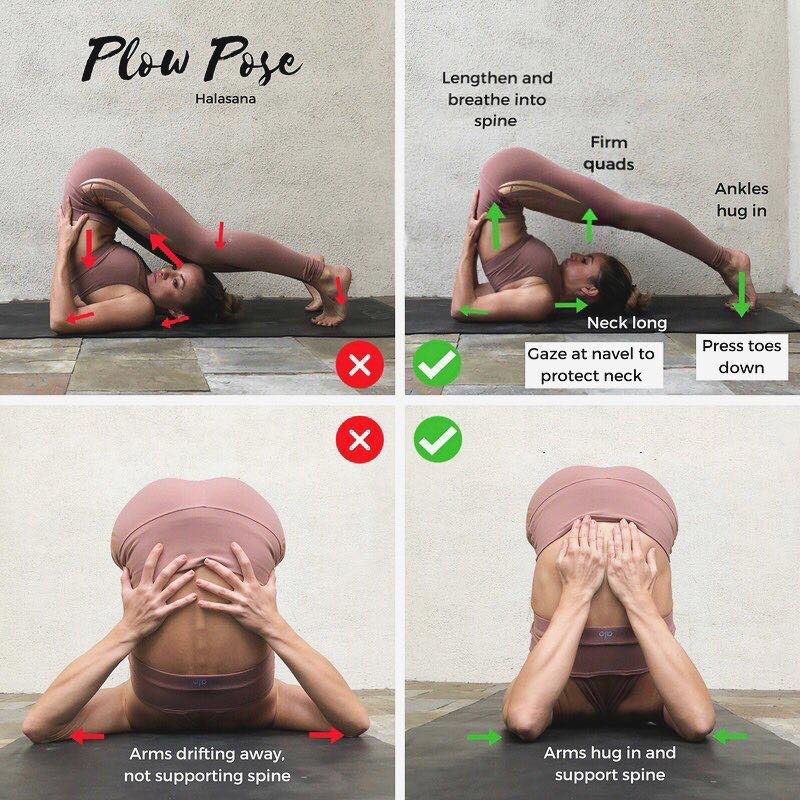 Yoga Halasana for home and for any place