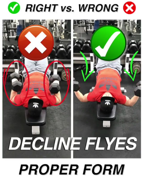 ✅ Dumbbell Decline Flyes