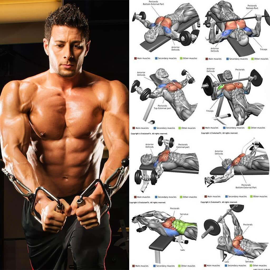 pump the muscles of the chest