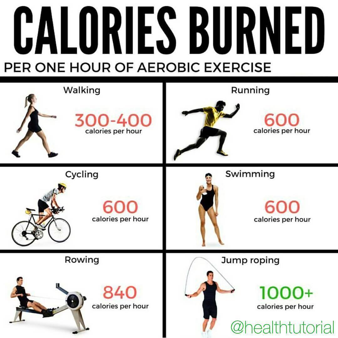 calories Burnt per one Hour of Aerobic Exercise