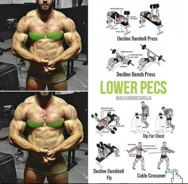 Exercises for every parte of the chest - weighteasyloss.com