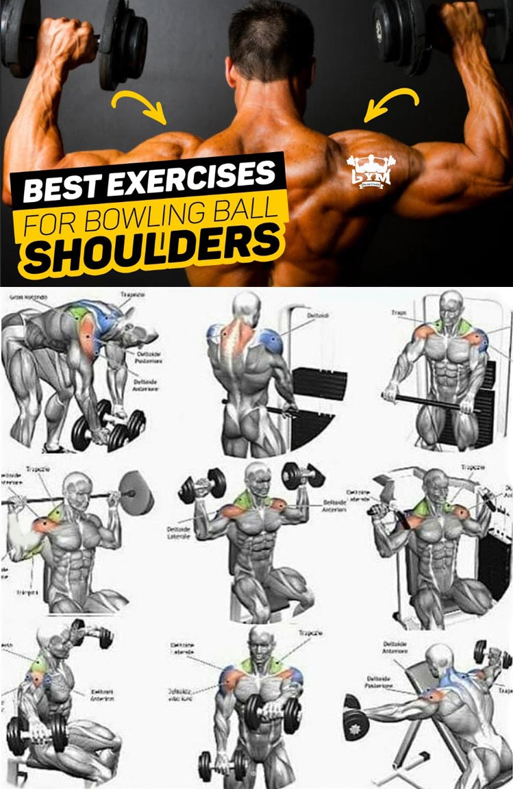 Basic exercises with a barbell to grow muscle