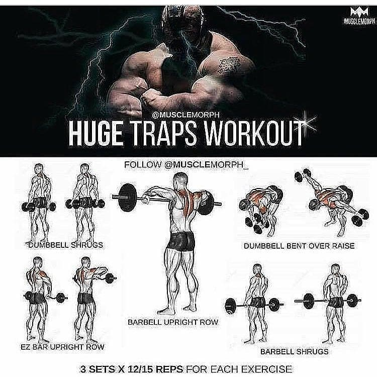 Hugs traps workout