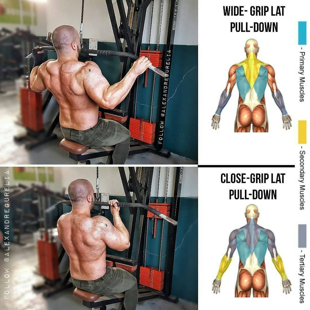 back huge exercises