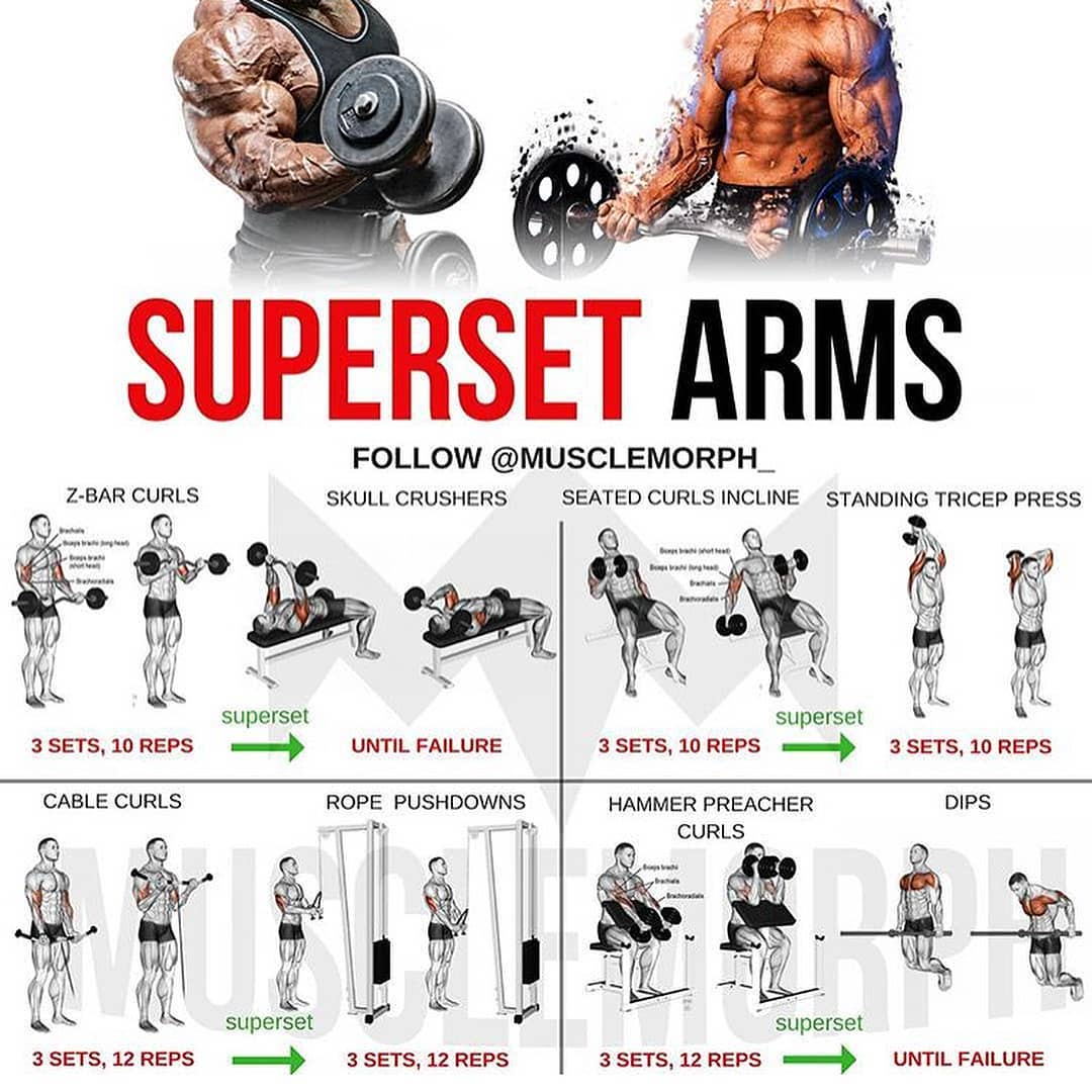 superset workout Arms