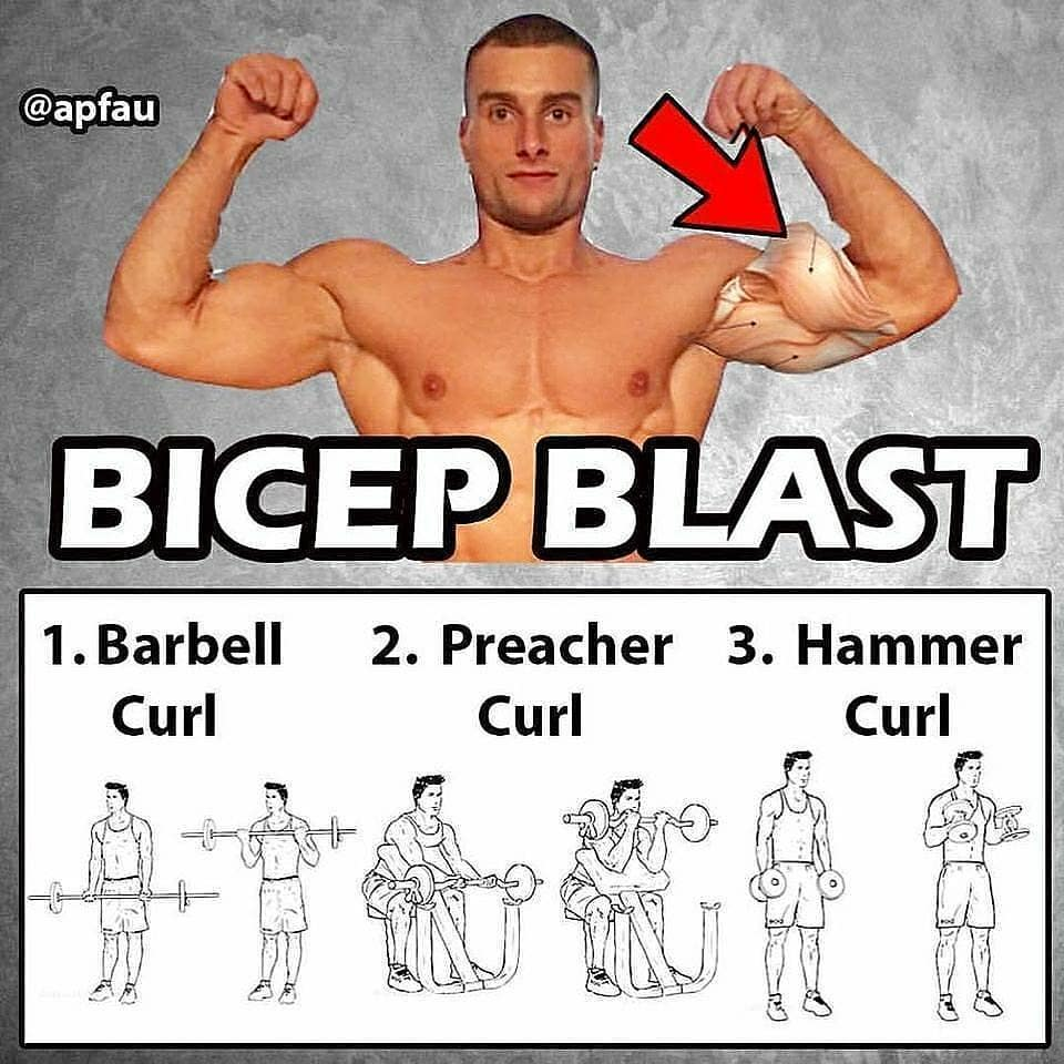 biceps blast exercises