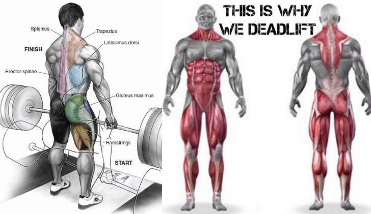 How to Correctly Deadlift