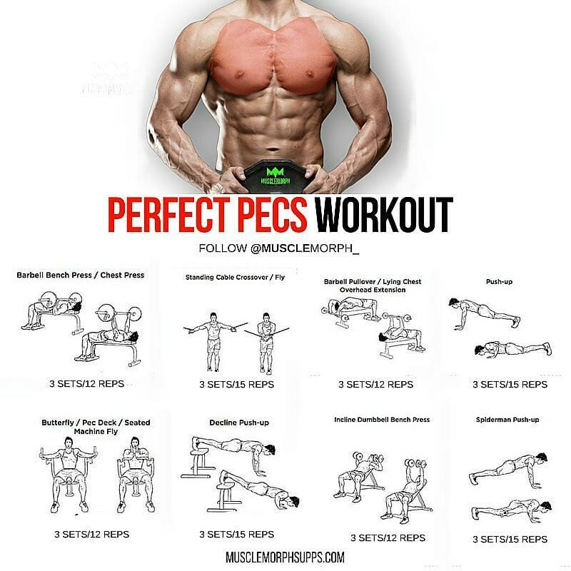 Huge Chest exercises