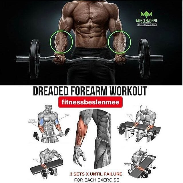 Dreaded forearm workout