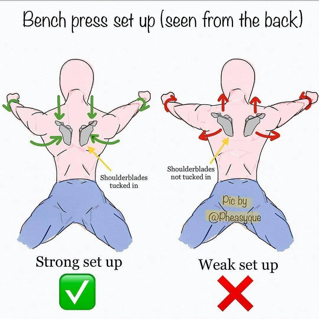 chest exercises correctnes