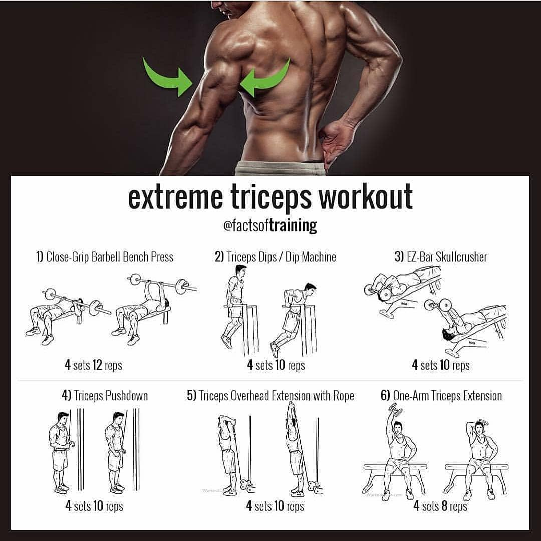 exercises for huge triceps