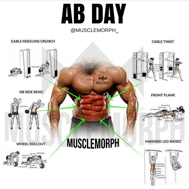 AB workout days