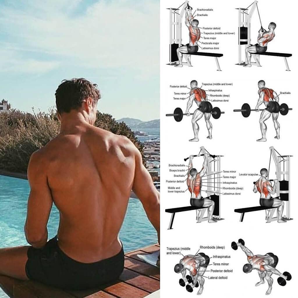 exercises for huge back
