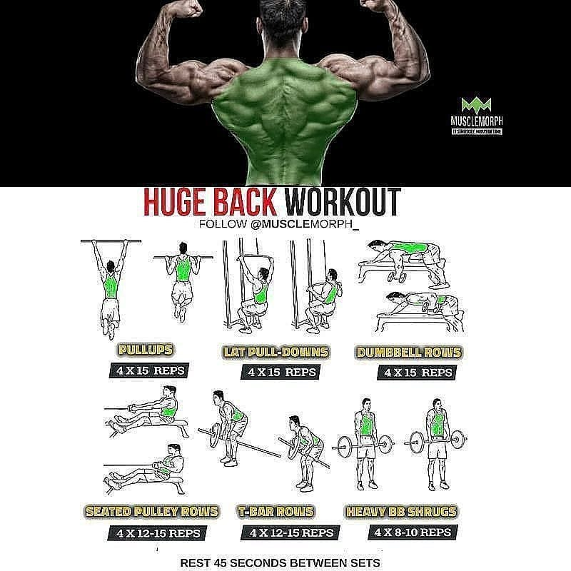 back day exercises