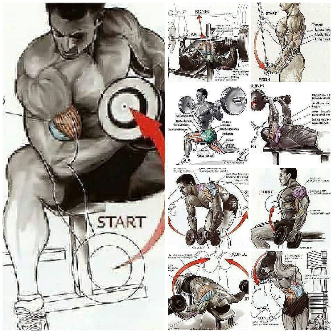 biceps exercises, best gain mass
