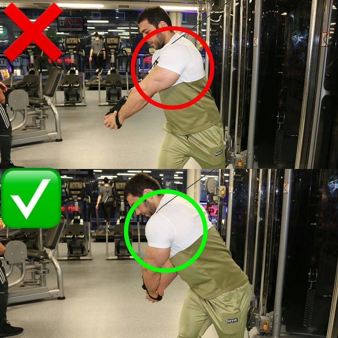 Chest & shoulder extension