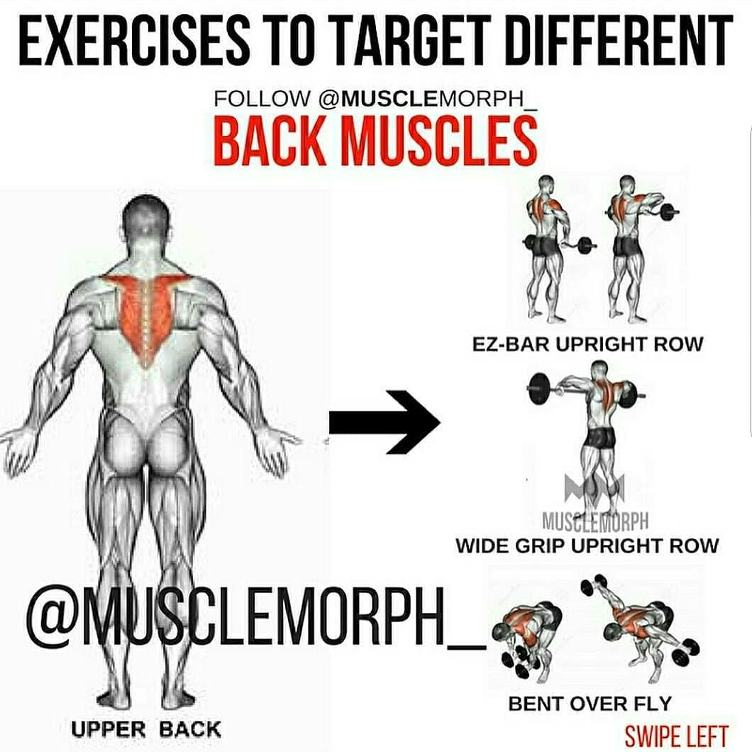 Back muscles training