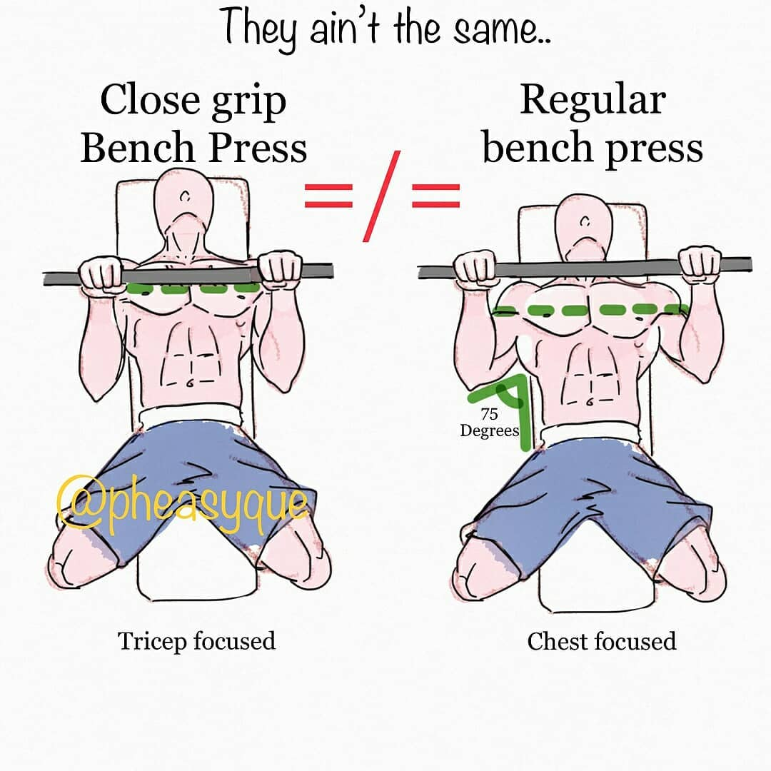 correctnes bench press